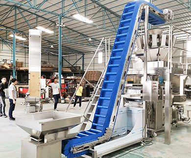 Blue PP Material Inclined Conveyor